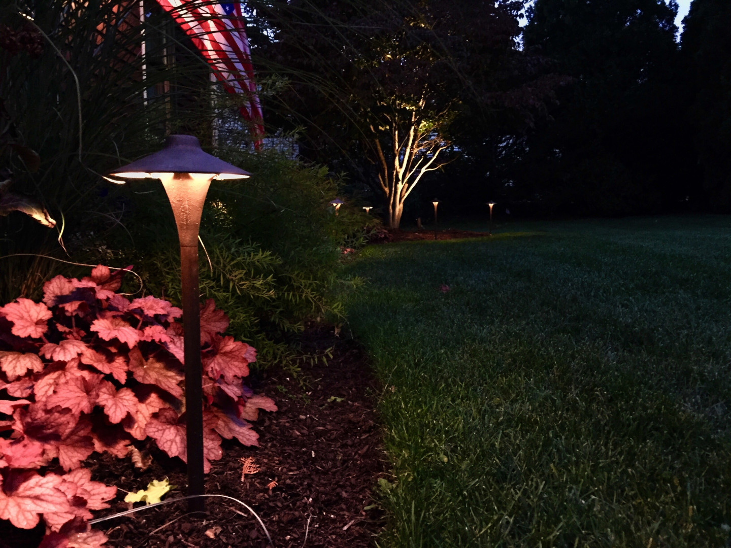 Professional Landscape Lighting for Homes of Distinction